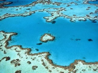 feature_greatbarrierreef