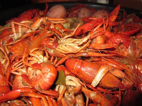 crawfish-99850_640